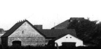Detalje fra forrige billede - kalkværket i baggrunden